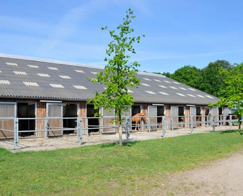 Stall von aussen mit Paddocks und Pferden